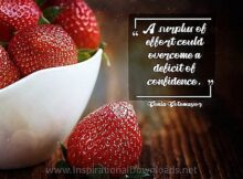 Surplus Of Effort by Sonia Sotomayor Inspirational Thought Graphic