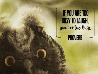 2804-Proverb Inspirational Wallpaper
