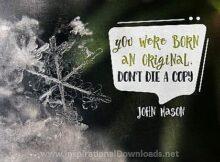 2723 Born An Origianl by John Mason